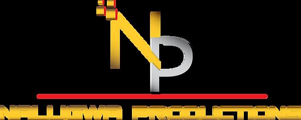 nm logo 4a.png
