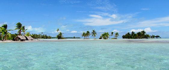 lagoon life...JPG
