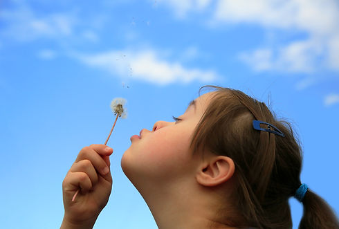 Little girl blowing dandelion.jpg