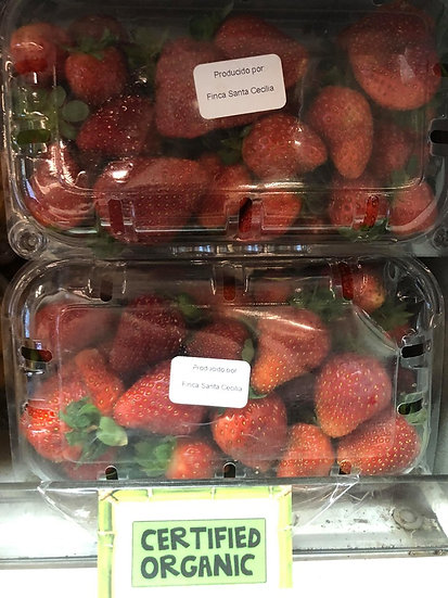 Organic Strawberries (500g)