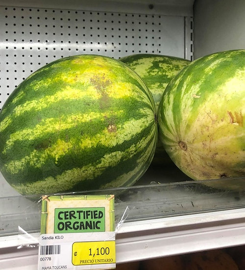 Organic Watermelon (1kg)