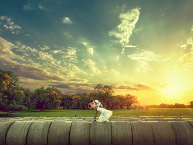 creative-farm-wedding-photos-florida.jpg