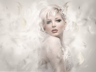 Bride feathersa.jpg