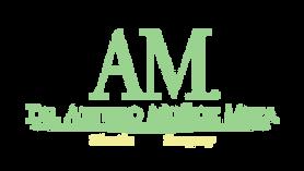 Doctor Arturo Munoz Meza for  Plastic Surgery Logo