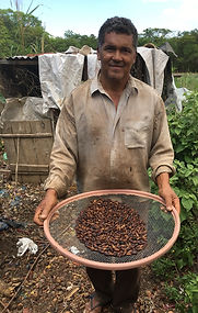 Farmer with Baru Nuts