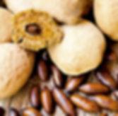 Baru nuts and baru fruit