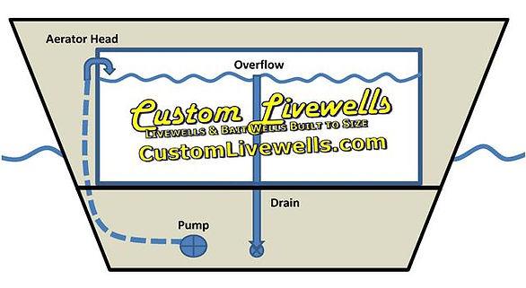 Bait Well Plumbing Diagram