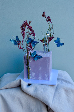 Square Cake with Butterflies