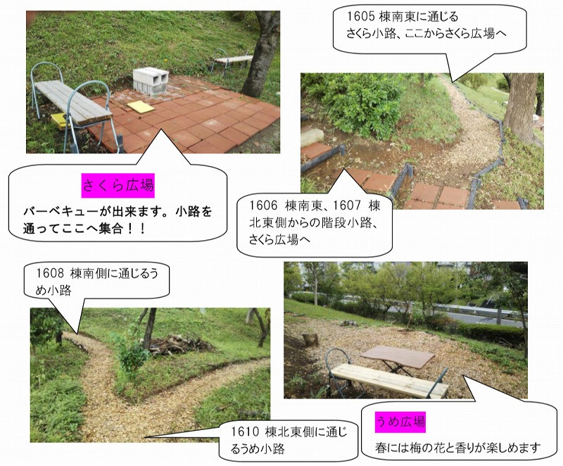 竹山団地16-2ブロックの団地住民による、美化ボランティア活動。広場や小径を造った