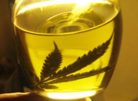 Cómo hacer aceite de Marihuana