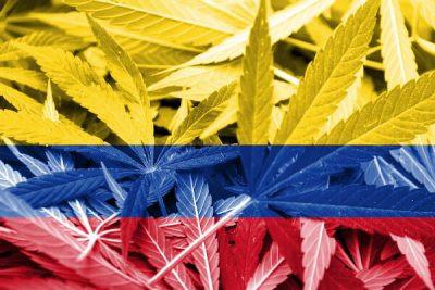 En colombia podras cultivar hasta 20 plantas de marihuana sin licencia