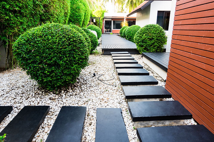 designed and design of landscaped garden. Architecturally structured planting with small shrubs and bamboo with composite decking as a pathway.  Edging around the house and through the garden.  The pathway breaks in to small path islands which are surrounded by white gravel and showcases the dark decking colour.  Privacy from the bamboo hedging