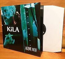 Masterlabs vinyl pressing gatefold ireland