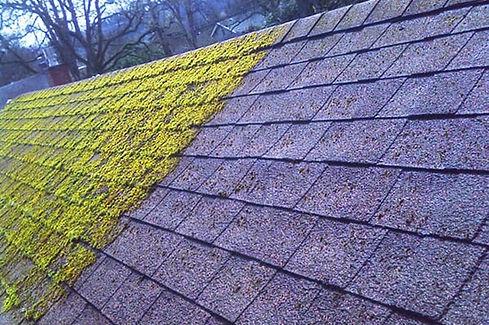 roof-moss-removal-hinckley.jpg