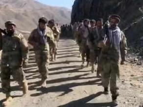 17 killed in Celebratory firing in Taliban's Kabul