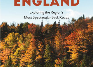 Great Review of SCENIC DRIVING NEW ENGLAND at Brilliant Light Publishing