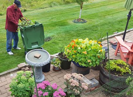 Summer Garden Clean-Up