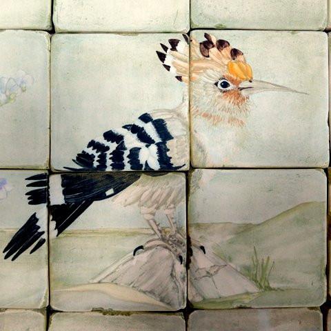 Israeli Bath Hoopoe
