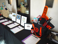 Silent Auction Sports Packs
