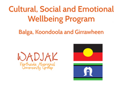 Cultural, Social and Emotional Wellbeing Program in Balga, Koondoola and Girrawheen (Perth) starting