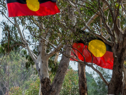 The scourge of youth suicide in Indigenous communities: what can be done?