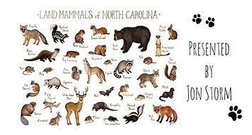 Jon Snow mammals.jpg