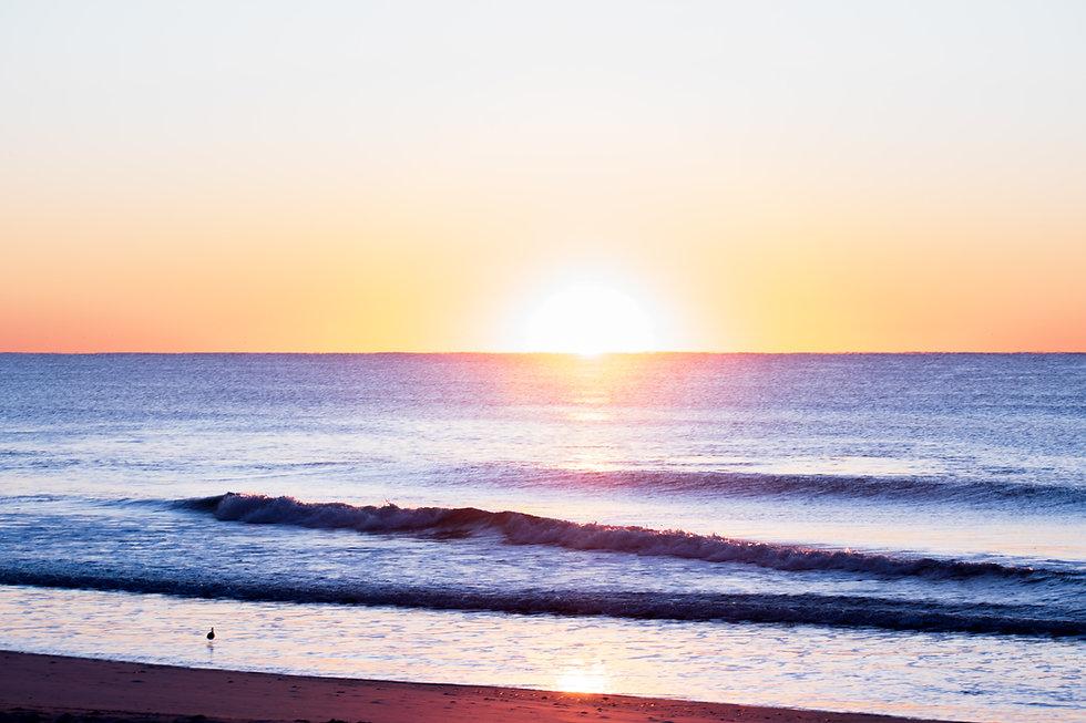 Sushine State of Mind | Lifestyle, Yoga, Community