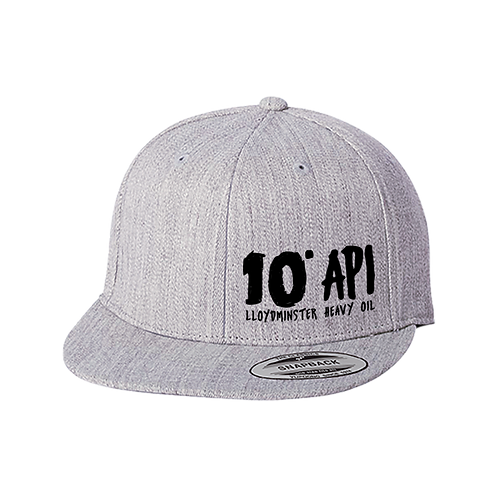 10 API Heather Grey Snapback Hat