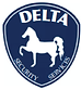 Delta Security Services LLC