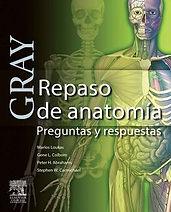 gray-repaso-de-anatomia.jpg