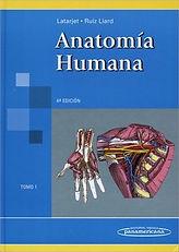 Anatomia Latarjet.jpg
