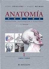 Anatomia Rouviere.jpg