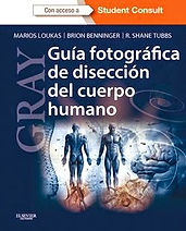GRAY Guia Fotografica de Diseccion del C