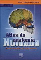 Atlas Anatomia Yokochi 6.JPG
