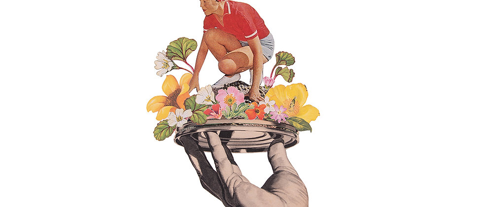 Constant Gardener