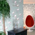 Flamingos  The Contemporary Collection