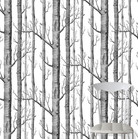 Woods  The Contemporary Collection
