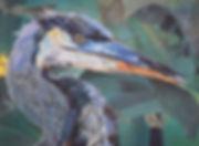 birdcroppedcloser.jpg