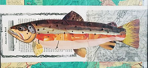 Brown Trout 6x12.jpg