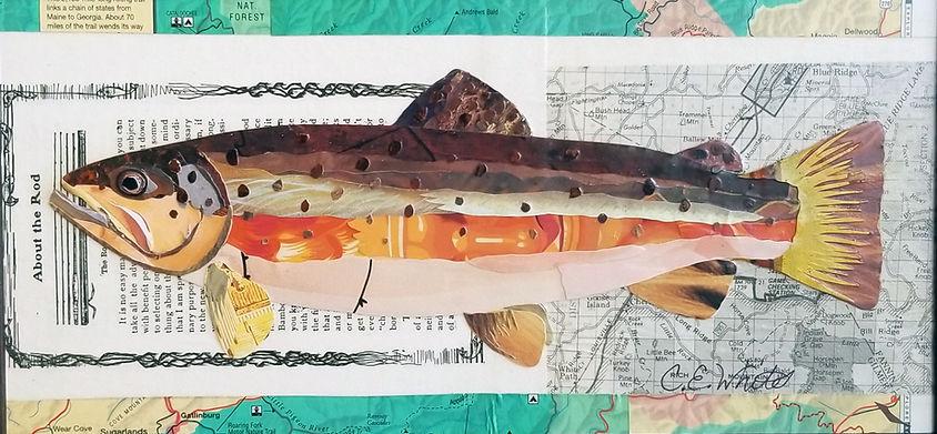 Brown Trout 6x12.jpg