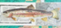 Rainbow Trout 6x12.jpg