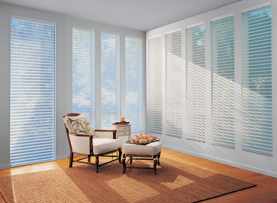custom horizontal blinds in bright room roanoke, va