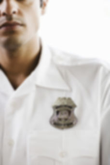 professional security jobs
