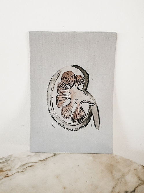 (Print) Kidney, Linoleum X Watercolor, art-print on premium-paper, limited