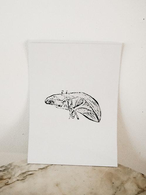 (PRINT) Liver, Linoleum X Pure, art-print on premium-paper, limited