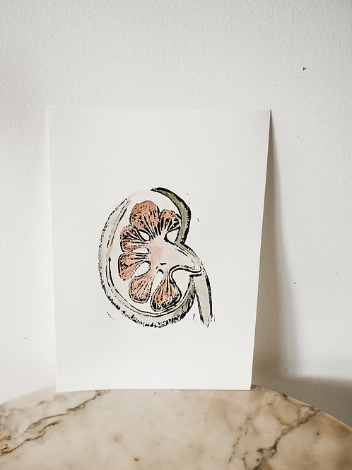 Kidney, Watercolor X Linoleum, original-print on paper, limited