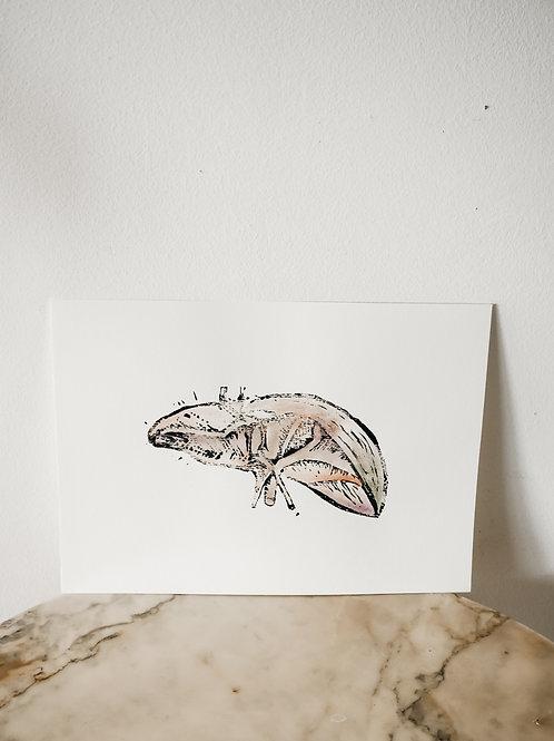 Liver, Watercolor X Linoleum, original-print on paper, limited