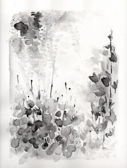 Botanical Study, black portrait no.2
