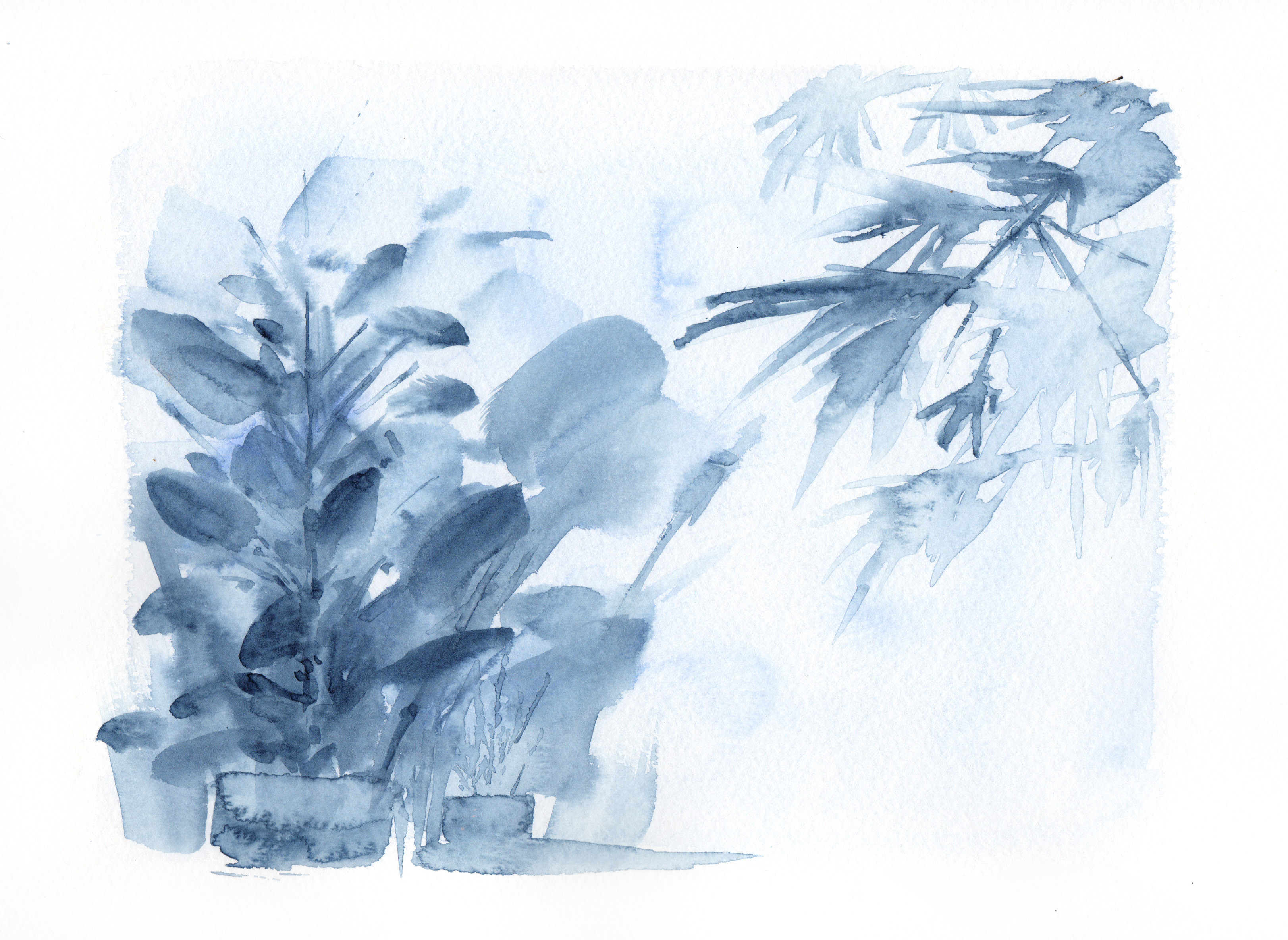 Botanical Study, blue no.1