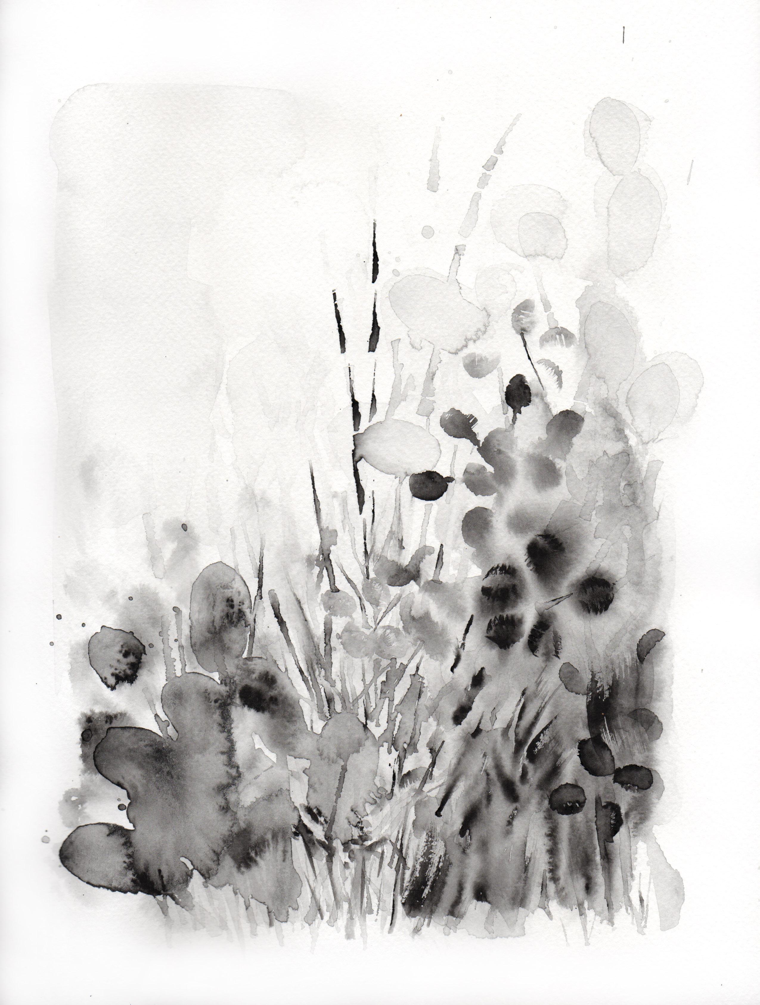 Botanical Study, black portrait no.4